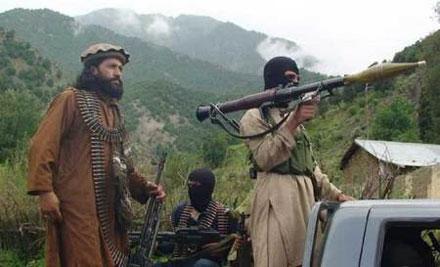 Al Qaeda Ojai